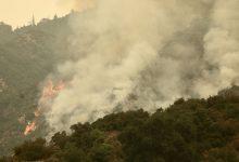 Photo of Death toll in massive California wildfire reaches 10